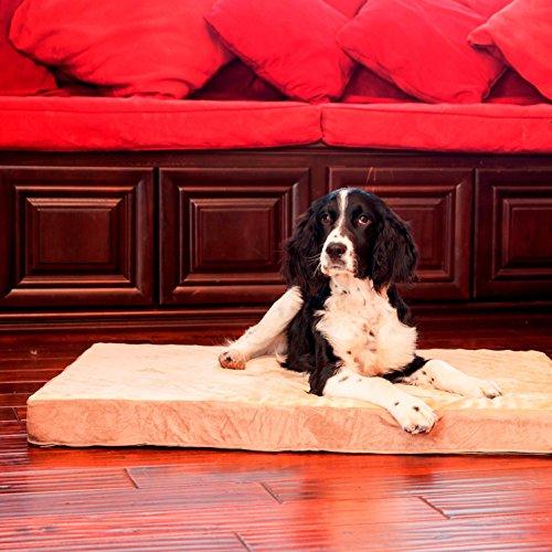 Integrity Bedding Integrity Orthopedic Memory Foam Rectangle Dog Bed (SM-XL)