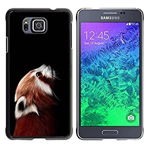 Impact Case Cover with Art Pattern Designs FOR Samsung ALPHA G850 Little Red Panda Bear Cute Face Portrait Animal Betty shop