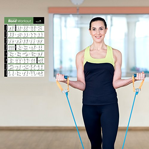 North York Personal Trainer For In Home: Resistance Band/Tube Exercise Poster Laminated