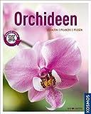 Orchideen (Mein Garten): Gestalten Pflanzen Pflegen