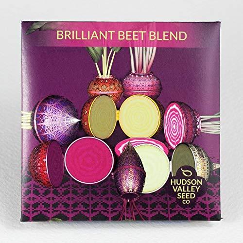 Hudson Valley Seed Company, Vegetable Garden Seed Set,Organic,Heirloom Seeds, Non-GMO, 5 Varieties, Carrot, Radish, Bean, Beet, Salad Variety Pack, Lettuce, Raddichio