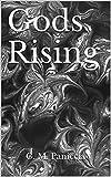 Gods Rising (Gods of Eldaterra Book 1)