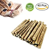 Fanxieast Cat Catnip Sticks,40 Pieces Cat Catnip Natural Matatabi (Silvervine) Chew Sticks Teeth Grinding Chew Toys for Cat Kitten Kitty Diameter 0.2-0.8 Inch (Catnip)