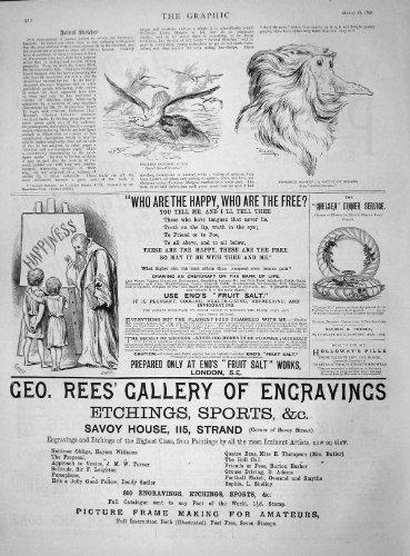 old-print Print 1892 Rees Gallery Engraving Eno'S Fruit Salt Monkey Sea 412M145 ()