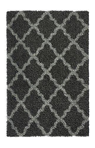 Area 51 Design (Shag Area Rug, Contemporary Trellis Design, Anti-Bacterial, Olefin Fiber, 39-Inch-by-60-Inch (3x5),)