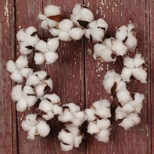 The Country House Collection MINI Cotton Boll Floral Wreath (11'' Outer Diameter)