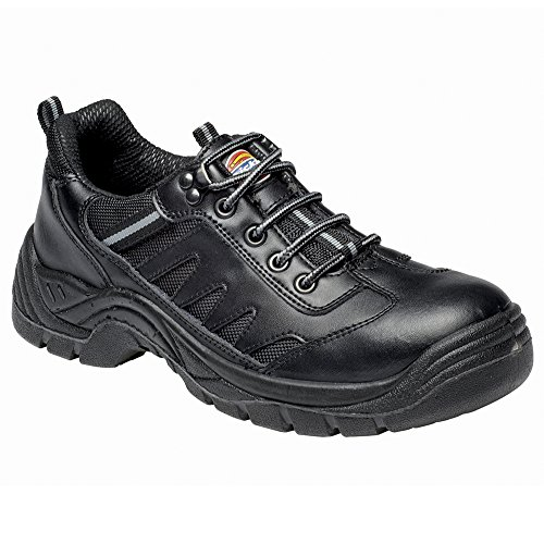 Dickies Stockton super safety trainer (FA13335) 3dFR5R8Kde