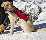 RUFFWEAR WEB MASTER PROFESSIONAL RED DOG HARNESS ♦ LIFT AND ASSIST HARNESS TWO POCKETS ♦ ALL SIZES (Small)