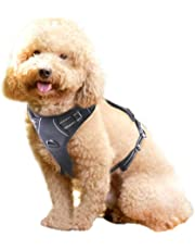 Rabbitgoo Front Range Dog Harness Adjustable Outdoor Pet Vest with Handle Easy Control for Small Medium Large Dogs and Durable Material (Small, Black)