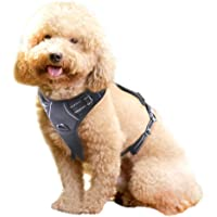 Rabbitgoo Front Range Dog Harness No-Pull Pet Harness Adjustable Outdoor Pet Vest 3M Reflective Oxford Material Vest for Dogs Easy Control for Small Medium Large Dogs (Medium, Black)