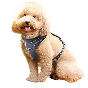 Rabbitgoo No Pull Dog Harness Medium, Front Loading Pet Vest Harness