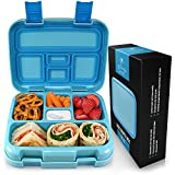Best Bento Box For Kids - Zulay Kids Bento Box Lunch Box - Durable Review