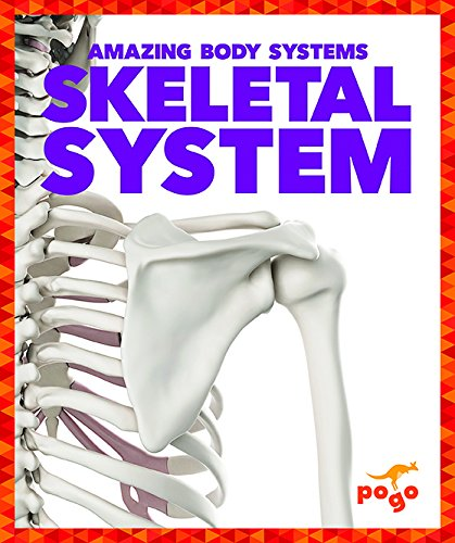 Skeletal System (Pogo Books: Amazing Body Systems)