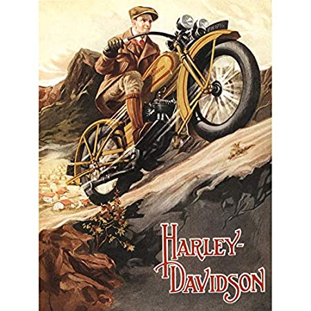 ADVERTISEMENT HARLEY DAVIDSON 1929 MOTORCYCLE BIKE ART ...