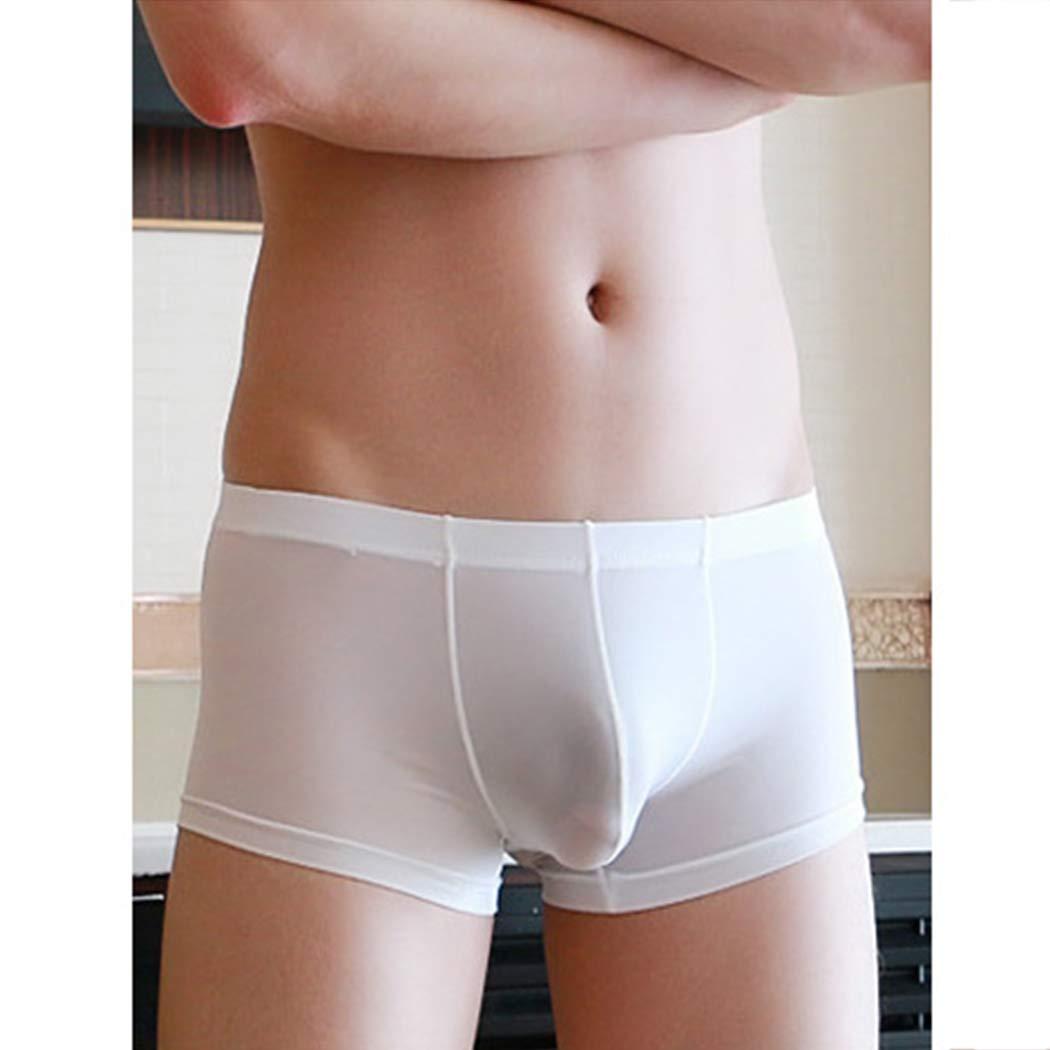 Raylans 100/% Pure Silk Knit Mens Underwear Briefs