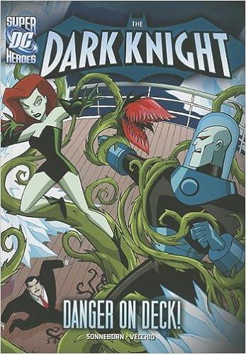 Danger on Deck! (The Dark Knight)