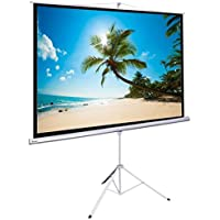 Manual Pull Down Portable Tripod Projection Screen w/ Floor Stand (120 4:3 Aspect Ratio)