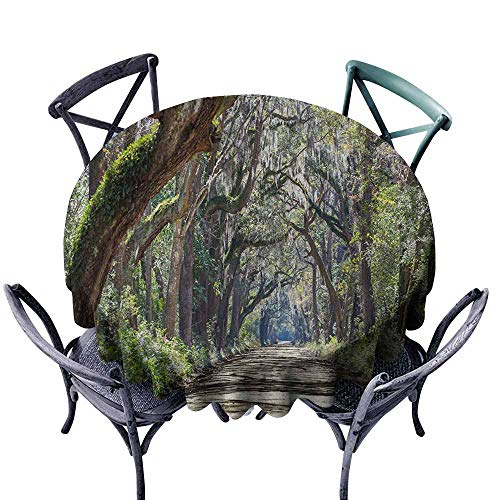 VIVIDX Stain Round Tablecloth,Nature,Road in The Forest with Trees Botany South Carolina National Park Eco Picture,Table Cover for Kitchen Dinning Tabletop Decoratio,70 INCH,Fern Green Umber