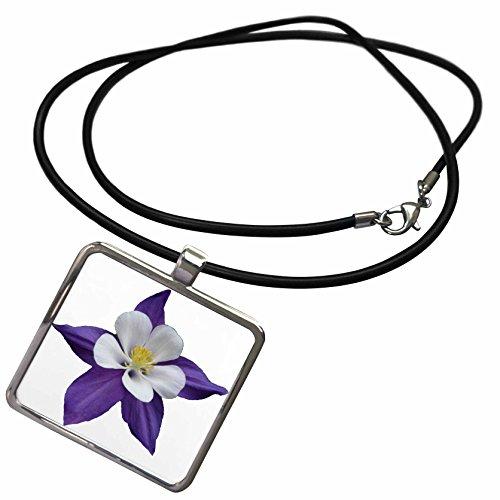 3dRose Sandy Mertens Flower Designs - Columbine Flower - Necklace With Rectangle Pendant (ncl_6263_1)