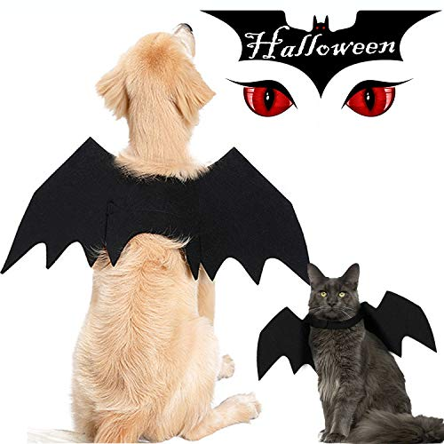 Scary Animal Skull Costumes - GreaSmart Halloween Spider Skeleton Bat Wings