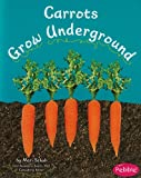 img - for Carrots Grow Underground book / textbook / text book