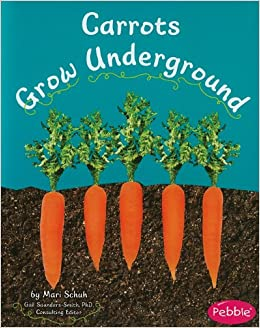 See under the ground
