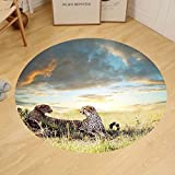 Gzhihine Custom round floor mat Safari Decor Collection Two Cheetahs Africa Nature Grass Dangerous Animals Hunters Rainy Weather Picture Bedroom Living Room Dorm Green Blue Ivory