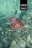 "Sea Turtle Tortoise Terrapin Week Planner Weekly Organizer Calendar 2020 / 2021 - Gliding through Water: Cute Wildlife Animal Pet Bullet Journal Notebook Diary in 6"" x 9"" Inch Pocket Size"