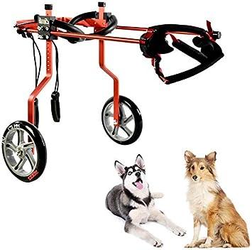 Andador para perros