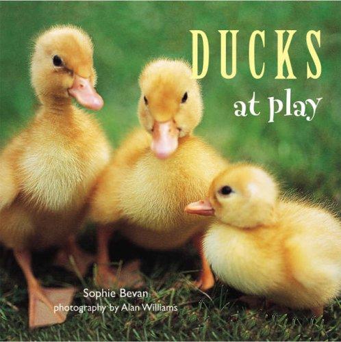 Read Online Ducks at Play ebook