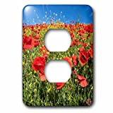 3dRose Danita Delimont - Flowers - Spain, Andalusia. A field of bright and cheerful red poppy wildflowers - Light Switch Covers - 2 plug outlet cover (lsp_277891_6)