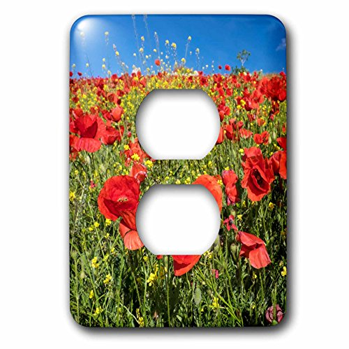 3dRose Danita Delimont - Flowers - Spain, Andalusia. A field of bright and cheerful red poppy wildflowers - Light Switch Covers - 2 plug outlet cover (lsp_277891_6) by 3dRose