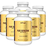 Berberine 1000mg / Serving by Natrogix Blood Sugar Supplement Hydrochloride HCl Extract - Support Blood Sugar Levels & Glucose Metabolism, Immune System, Third-party Tested - 90 VCapsules *6