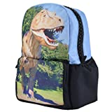 "17"" Inch Dinosaur 3d Photo Print Print Backpack Bag Book Bag"