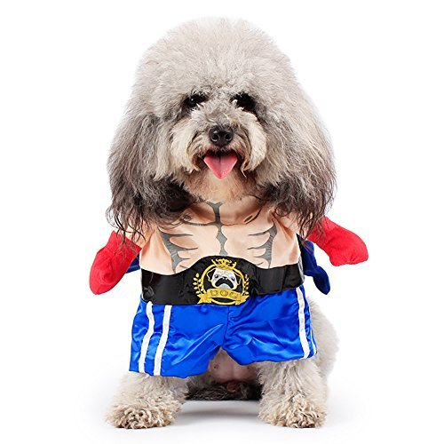 Yarssir Pet Dog Cat Boxer Costume Clothes Outfit Apparel for Halloween Festival Party (Dog Detective Costume)