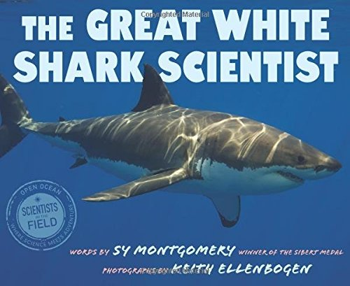 Image result for great white shark scientist