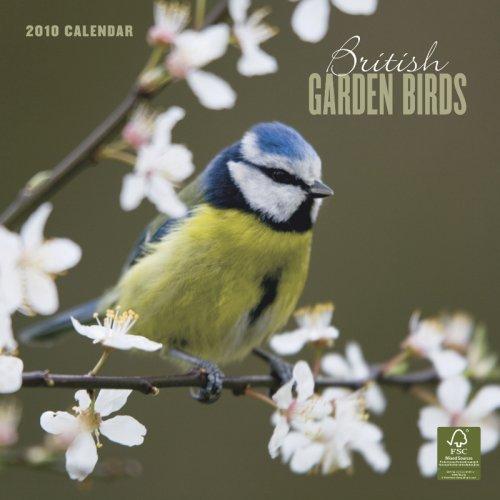 British Garden Birds 2010 Square Wall