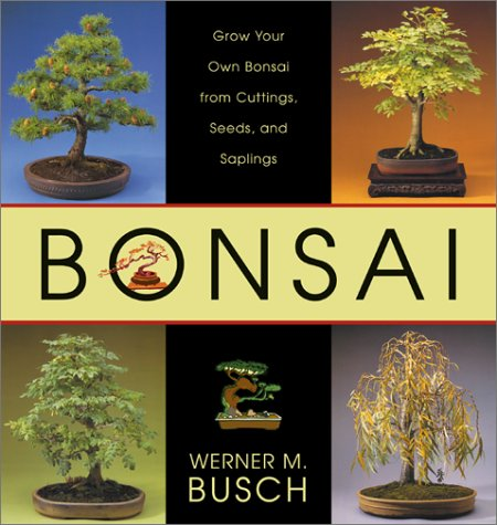bonsai-grow-your-own-bonsai-from-cuttings-seeds-and-saplings
