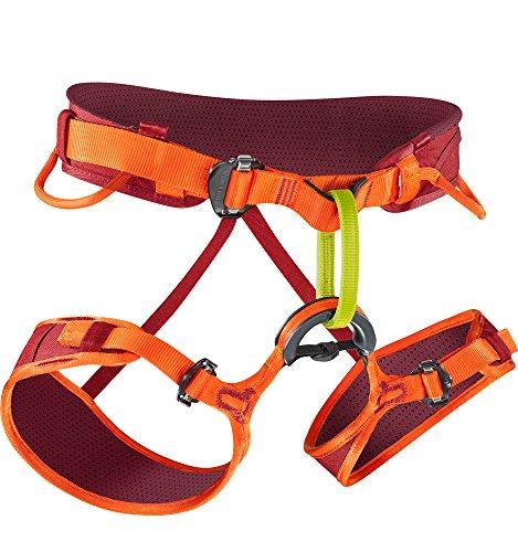 EDELRID - Jay II Climbing Harness, Vinered/Lollipop, Large