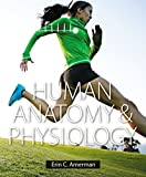 Human Anatomy and Physiology, Erin C. Amerman, 0805382941