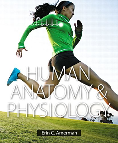 Human Anatomy+Physiology Text