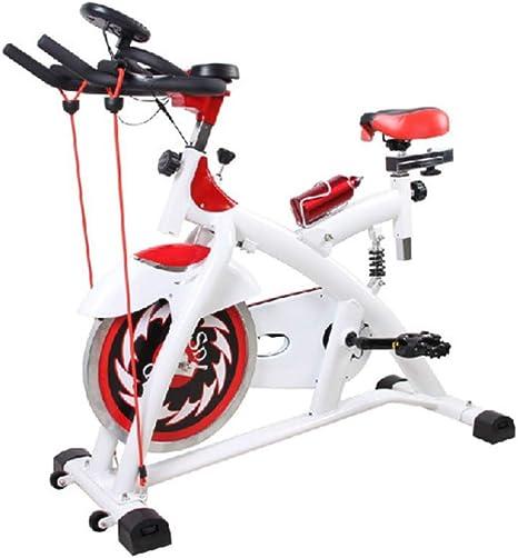 HLeoz Bicicleta de Spinning Advance Calidad Profesional, Pantalla ...