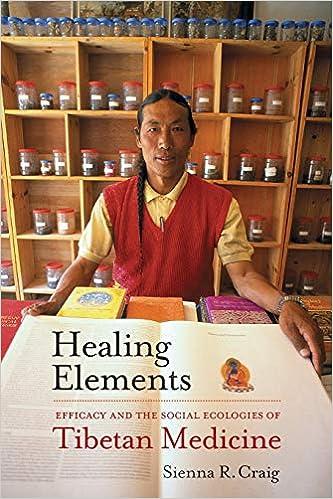 Craig Healing Elements cover art
