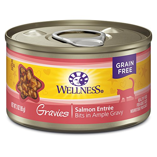 Wellness Complete Health Natural Grain Free Wet Canned Cat F