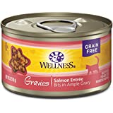 Wellness Complete Health Natural Grain Free Wet Canned Cat Food, Gravies Salmon Entrée, 3-Ounce Can (Pack Of 12)