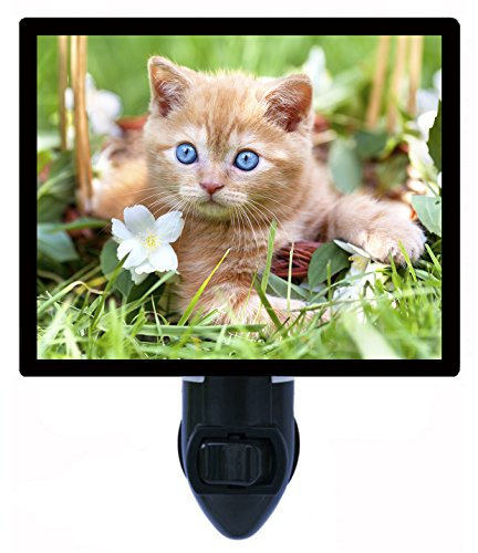 Night Light - Emmy - Cat - Kitten LED NIGHT - The Emmy Cat