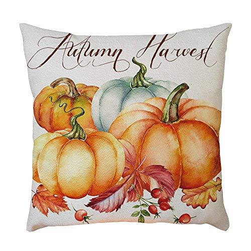 (Endern Halloween Pillow Cases,Halloween Pumpkin Comfortable Sofa Festival Pillow Case Cushion Home Decor Cover Sofa Bed Chair Car 18X18)