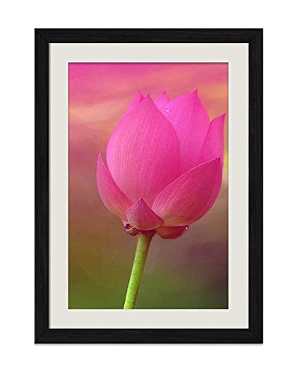 Amazon dzhaika pink lotus flower m9653 natural scenery art haika pink lotus flower m9653 natural scenery art print home decor wooden frame mightylinksfo