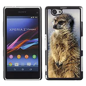Super Stella Slim PC Hard Case Cover Skin Armor Shell Protection // M00147643 Meerkat Nature Animals Mammal Wild // Sony Xepria Z1 Compact D5503