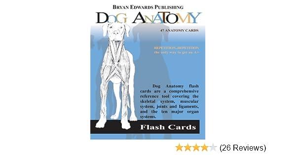 Dog Anatomy: 9781878576170: Medicine & Health Science Books @ Amazon.com